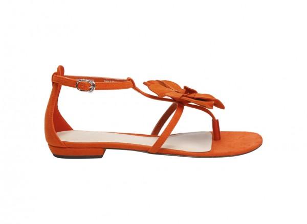Orange Flat-CK1-70190039
