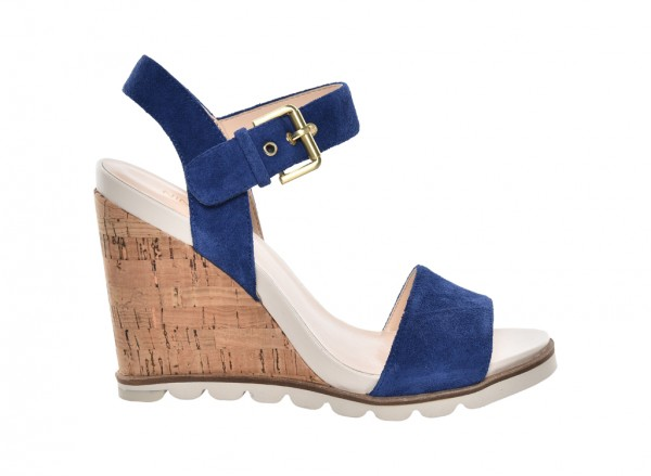 Nwgronigen Blue Wedges